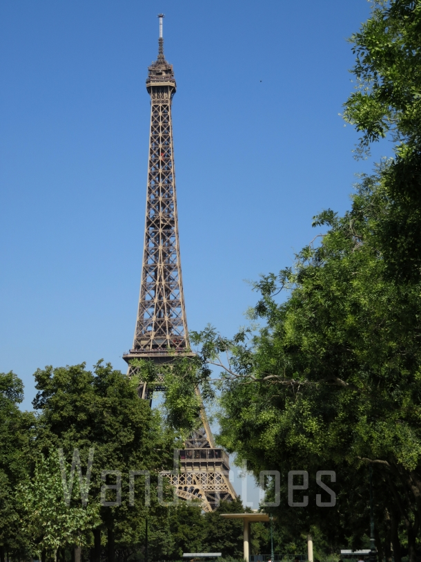 EiffelTrees Watermark