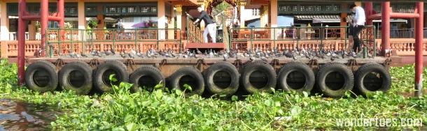chao-phraya-pidgeon-dock