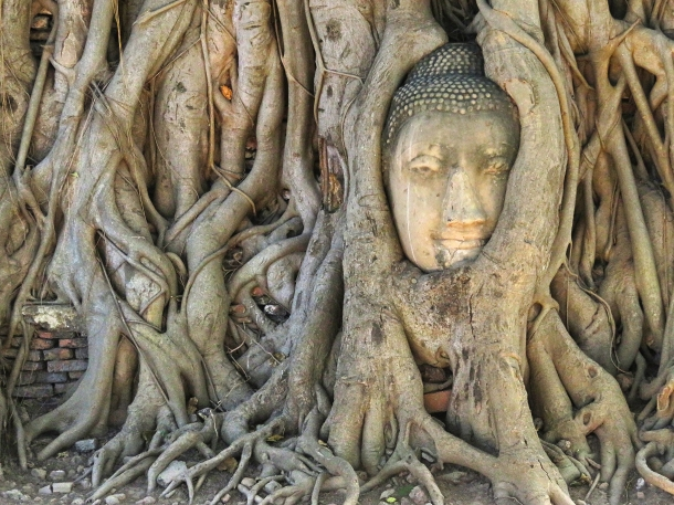 BuddhaHead