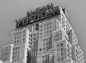 NYC Wander Photography